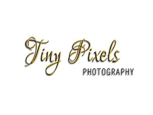 TP-logo-png-tiny2
