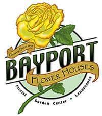 Bayport-Flower