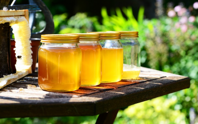 Where to Find Long Island Honey